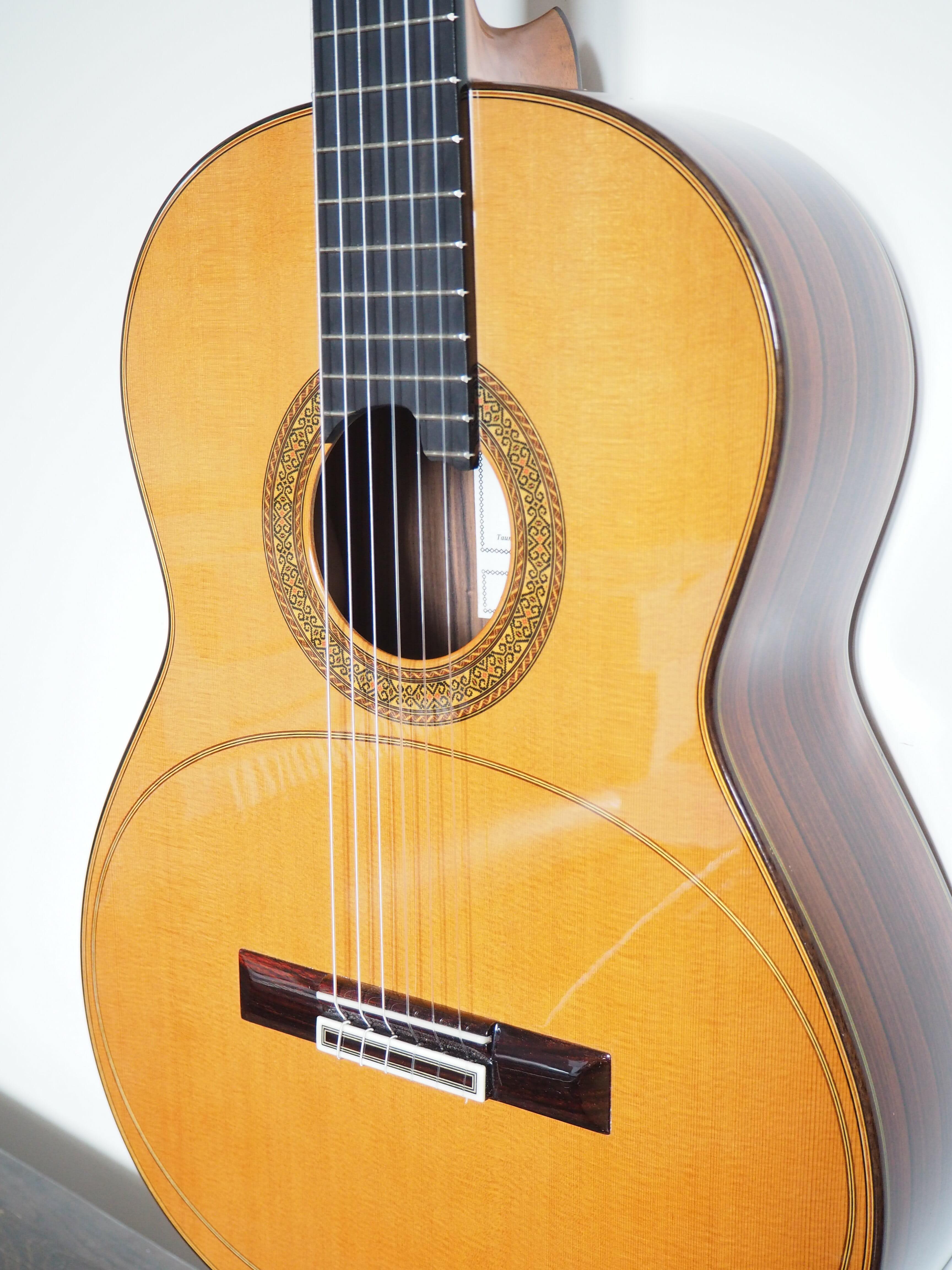 Dieter Hopf Artista membrane guitare classique lattice luthier