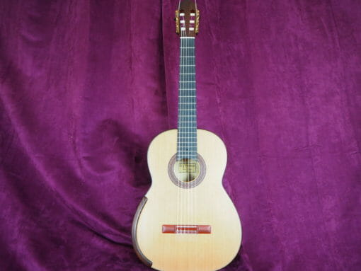 Greg Smallman & sons 2015 guitare classique luthier lattice