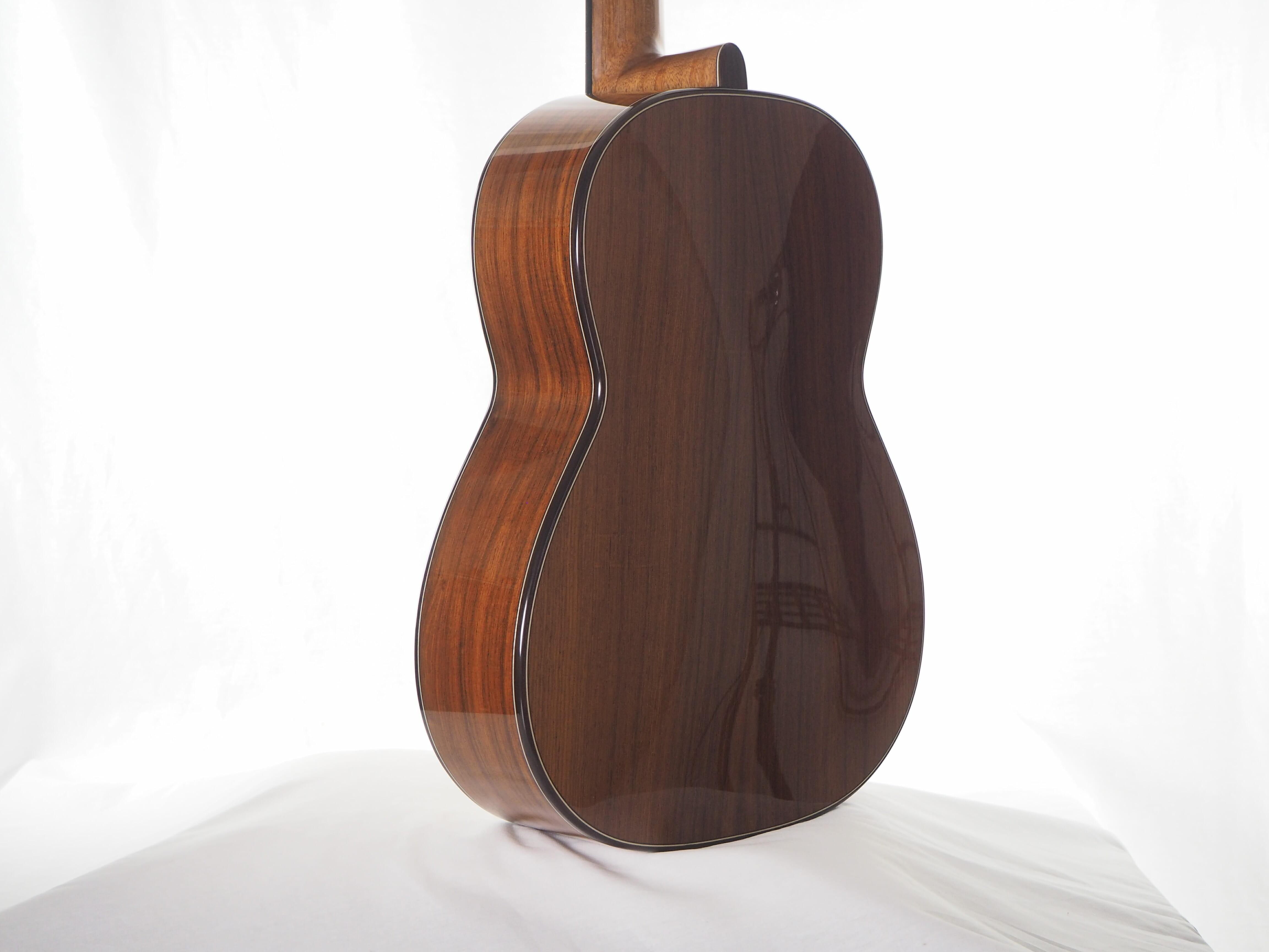 Greg Smallman & sons guitare classique de luthier barrage lattice