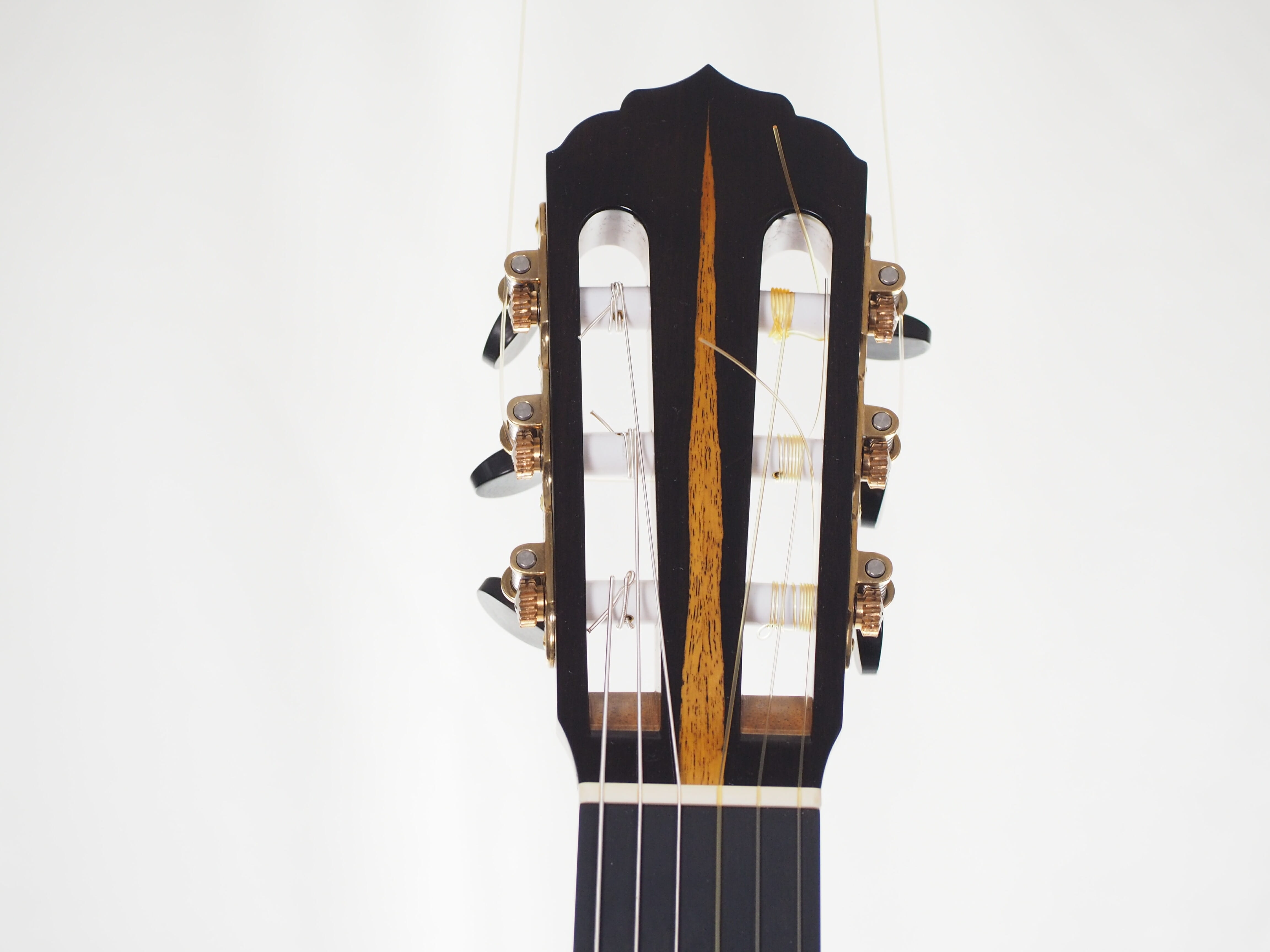 guitare classique reza safavian