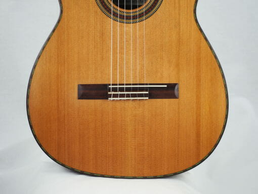 Giannis Palaiodimopoulos guitare classique 17PAL254-09