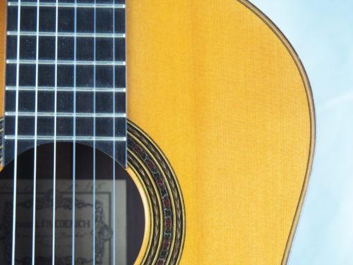 Daniel Friederich luthier guitare classique No 19FRI354-01