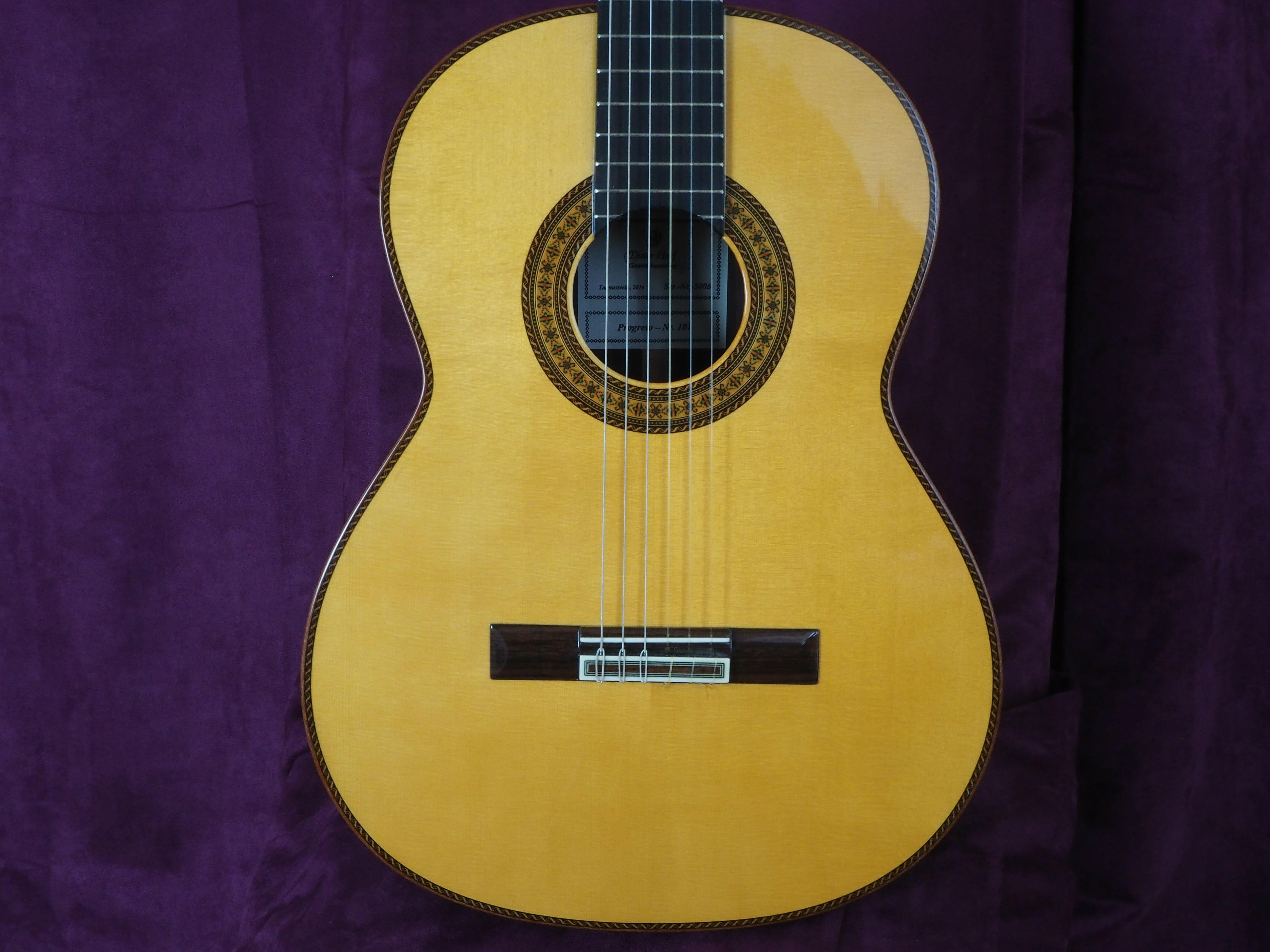 guitare classique dieter Hopf progresso