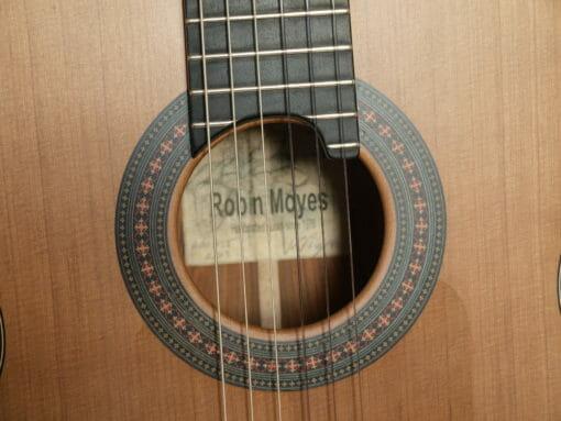 Robin Moyes