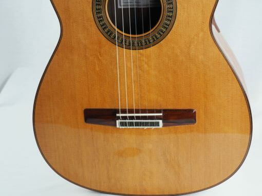 vicente carrillo Guitare classique du luthier herencia especial 07