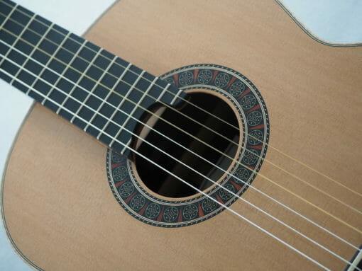 Martin Blackwell guitare